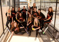 2016 CHS Fastpitch
